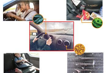 nettoyage et désinfection wam car wash